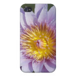 Flor de Lotus/Waterlily iPhone 4 Cobertura