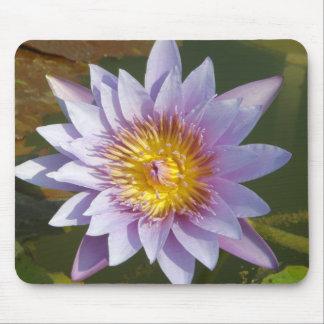 Flor de Lotus/Waterlily Alfombrillas De Raton