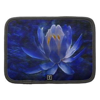 Flor de Lotus y su significado Organizadores