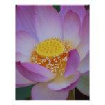 Flor de Lotus y su significado Membrete Personalizado
