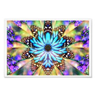 Flor de mariposa abstracta fotografías