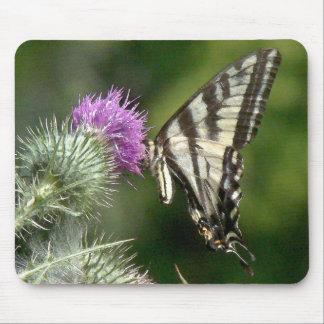 Flor de mariposa Mousepad