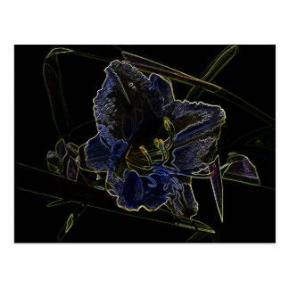 Flor de neón del Daylily del resplandor Tarjetas Postales
