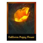 Flor de Ogange California Postal