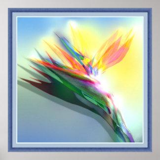 flor de paraíso poster