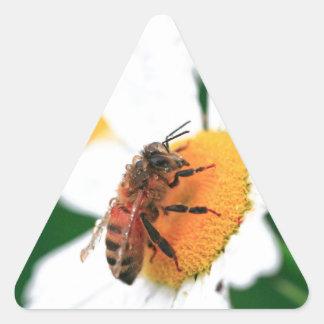 Flor de polinización de la abeja pegatina de triangulo