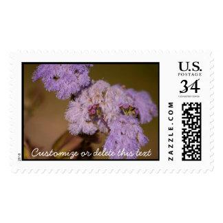 Flor de punta púrpura; Personalizable Sellos