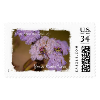 Flor de punta púrpura sellos