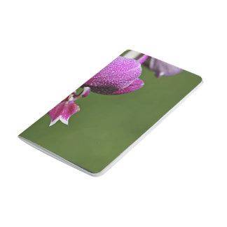 Flor de restauración de la orquídea cuadernos grapados