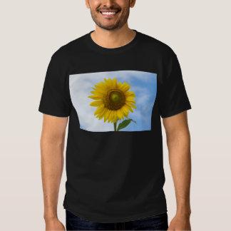 Flor de Sun contra el cielo azul Poleras