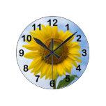 Flor de Sun contra el cielo azul Relojes De Pared