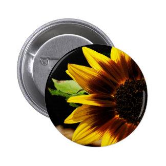 Flor de Sun Pin