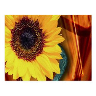 Flor de Sun Tarjetas Postales