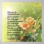 Flor de trompeta del rezo de la serenidad en españ póster