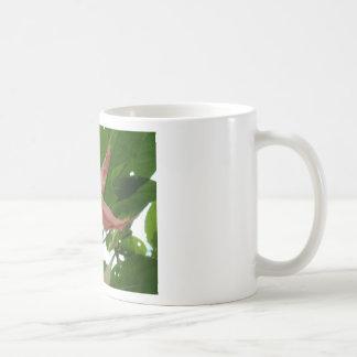 Flor de trompeta rosada (flor de la estrella) taza