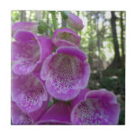 Flor de trompeta rosada tejas  ceramicas