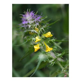 Flor de un trigo con cresta de la vaca membrete a diseño