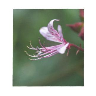 Flor de una zarza ardiente bloc de papel