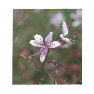 Flor de una zarza ardiente libretas para notas