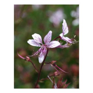 Flor de una zarza ardiente membrete
