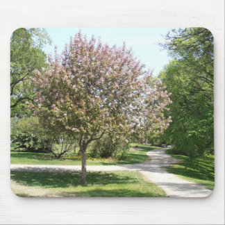 Flor de Winnipeg Tapete De Raton