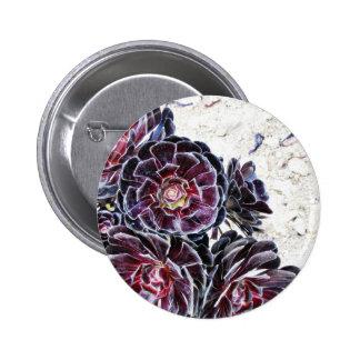 Flor del Aeonium en rocas secas Pin Redondo De 2 Pulgadas