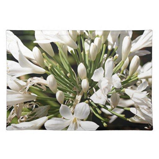 Flor del Agapanthus en la floración Manteles