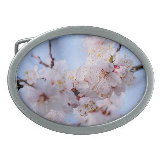 Flor del albaricoque japonés hebilla de cinturón oval