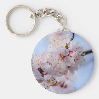 Flor del albaricoque japonés llavero redondo tipo pin