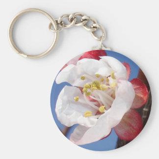 Flor del albaricoque llavero redondo tipo pin
