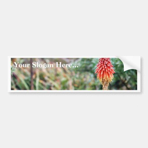 Flor del áloe pegatina de parachoque