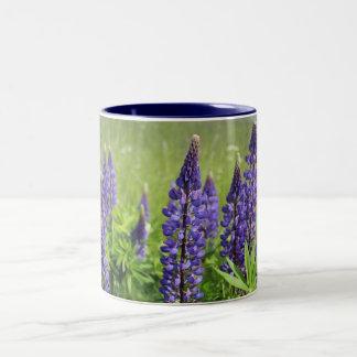 Flor del altramuz taza de dos tonos