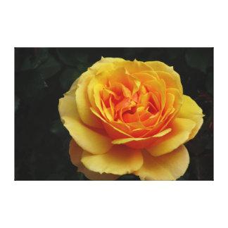 Flor del amarillo anaranjado impresión en lienzo
