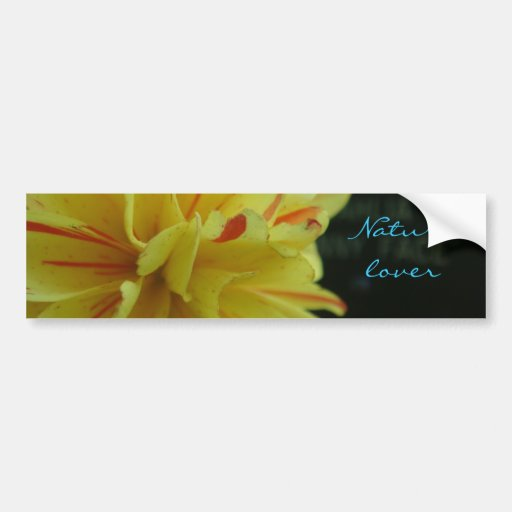 Flor del amarillo del amante de naturaleza pegatina para auto