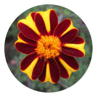 """Flor del amarillo del rojo rico del terciopelo de invitación 5.25"""" x 5.25"""""""