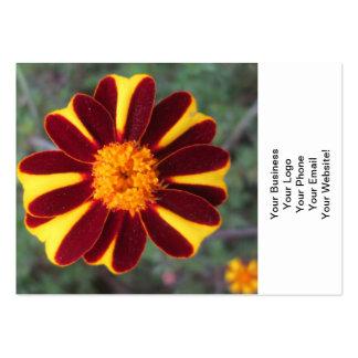 Flor del amarillo del rojo rico del terciopelo de tarjetas de visita grandes