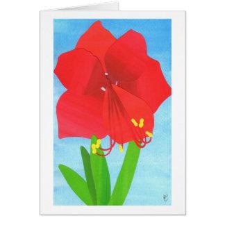 Flor del Amaryllis Felicitacion