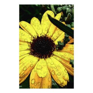 "Flor del amor folleto 5.5"" x 8.5"""