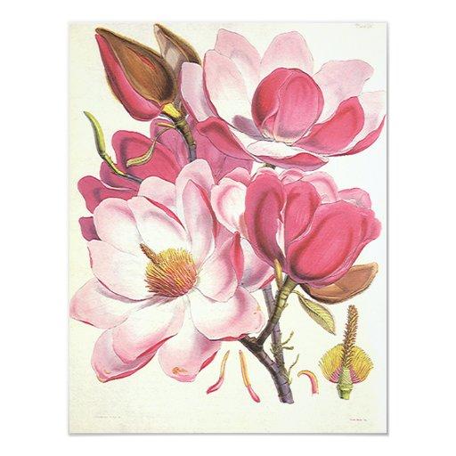 """Flor del árbol de la magnolia del vintage, flores invitación 4.25"""" x 5.5"""""""