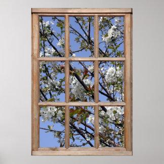 Flor del árbol de una ventana posters