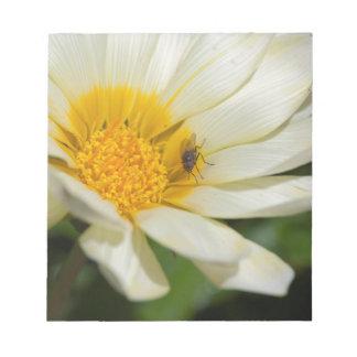 flor del aster en el jardín bloc de papel