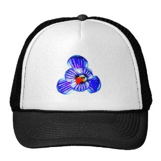 Flor del azafrán gorra