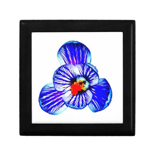 Flor del azafrán joyero cuadrado pequeño