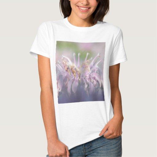 Flor del beebalm de la bergamota salvaje t-shirt