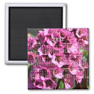 Flor del Bergenia; Calendario 2012 Imán Para Frigorifico