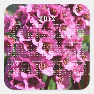 Flor del Bergenia; Calendario 2012 Pegatina Cuadrada