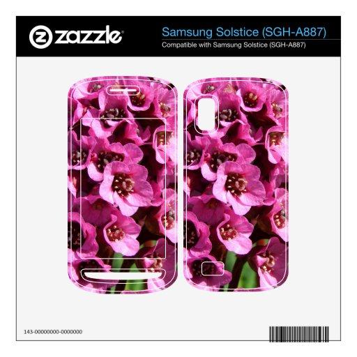 Flor del Bergenia Skins Para Samsung Solstice