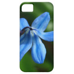 Flor del Bluebell iPhone 5 Case-Mate Protectores
