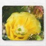 flor del cactus alfombrilla de ratón