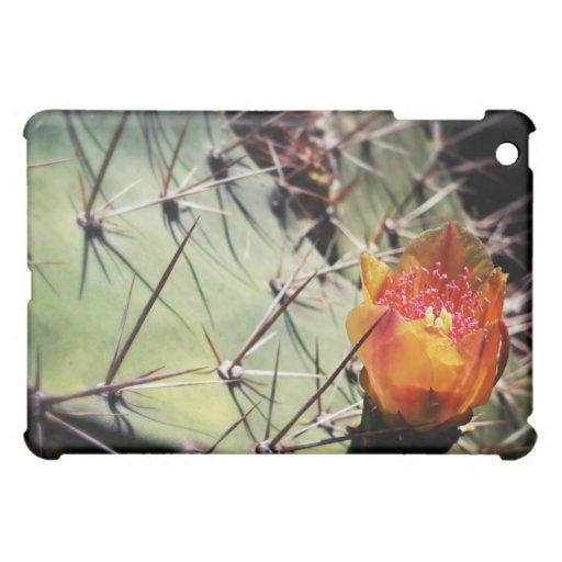 Flor del cactus - caso del ipad